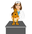 bloodhound sitting on table visiting veterinarian vector image
