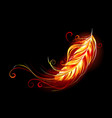 flaming feather vector image vector image