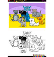 funny cats animal characters group color book vector image vector image
