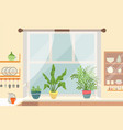 kitchen interior window sill with plants vector image