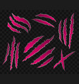 pink scratches on transparent background vector image