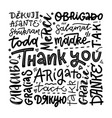 thank you phrases in many languages thanks modern vector image vector image