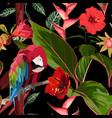tropical birds parrot exotic jungle plants vector image vector image