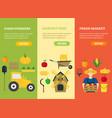 farmer vegetable seller banner card vecrtical set vector image vector image