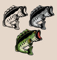 fishing logo vector image