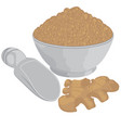 ginger root and ginger powder in a bowl vector image vector image