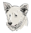 Head muzzle the dog Shepherd Sketch drawing Black vector image vector image