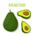 avocado whole slice stickertropical label vector image