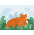 cute cartoon fox with grass wild vector image vector image