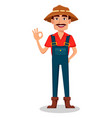 farmer cartoon character vector image vector image