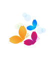 flying colorful butterflies vector image