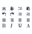 Format and editing icons vector image