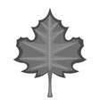 maple leaf icon monochrome vector image vector image