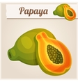 Detailed Icon Papaya vector image vector image
