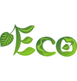Eco vector image vector image