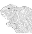 groundhog adult coloring page vector image vector image