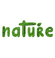 handwritten lettering nature with decorations the vector image