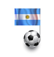 Soccer Balls or Footballs with flag of Argentina vector image