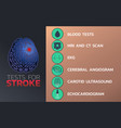 tests for stroke icon design infographic health vector image vector image