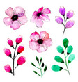 watercolor spring floral collection vector image vector image
