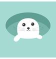 harp baby seal pup ice-hole cute cartoon character