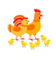 hens family cute cartoon characters hen rooster vector image vector image
