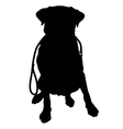 Labrador Retriever Leash Silhouette vector image vector image
