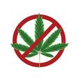 marijuana prohibited sign vector image vector image