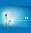 realistic wither dandelion with flying seeds vector image vector image