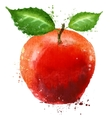 ripe apple logo design template food or fruit vector image vector image
