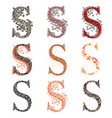 various combination fishnet letter s vector image vector image