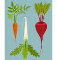 Growing Root Vegetables Set with Green Leafy Top vector image vector image