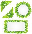White flowers on green leaves frame vector image vector image