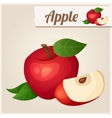 Detailed Icon Red apple vector image vector image