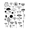 Floral collection sketch fro your design vector image
