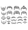 male hairs sketch beard mustache facial elements vector image