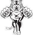 tiger attacks vector image vector image