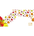 Bright autumn background for invitation or ad vector image vector image
