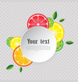 citrus fruits ornament frame with space for text vector image vector image