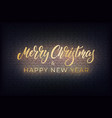 merry christmas and happy new year sign xmas and vector image vector image