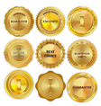 Set of golden metal design elements on white vector image vector image
