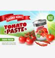 tomato paste poster ad vector image vector image