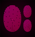 Types of fingerprint patterns vector image vector image
