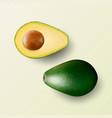 3d realistic whole and cut half avocado vector image