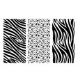 animal print set leopard zebra skin pattern vector image
