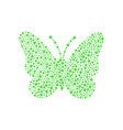 butterfly in green design vector image vector image