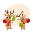 Christmas reindeer in red scarf cartoon vector image
