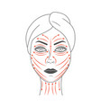 schematic representation of facial massage lines vector image