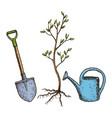 sketch tree planting vector image
