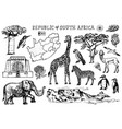 africa doodle vintage set wild animals in safari vector image